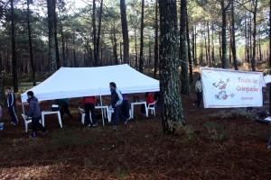 Local de trabalho na floresta, na tenda COC com a Escola COC presente